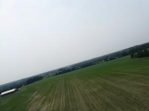 Kite Photo 2