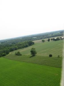 Kite Photo 3