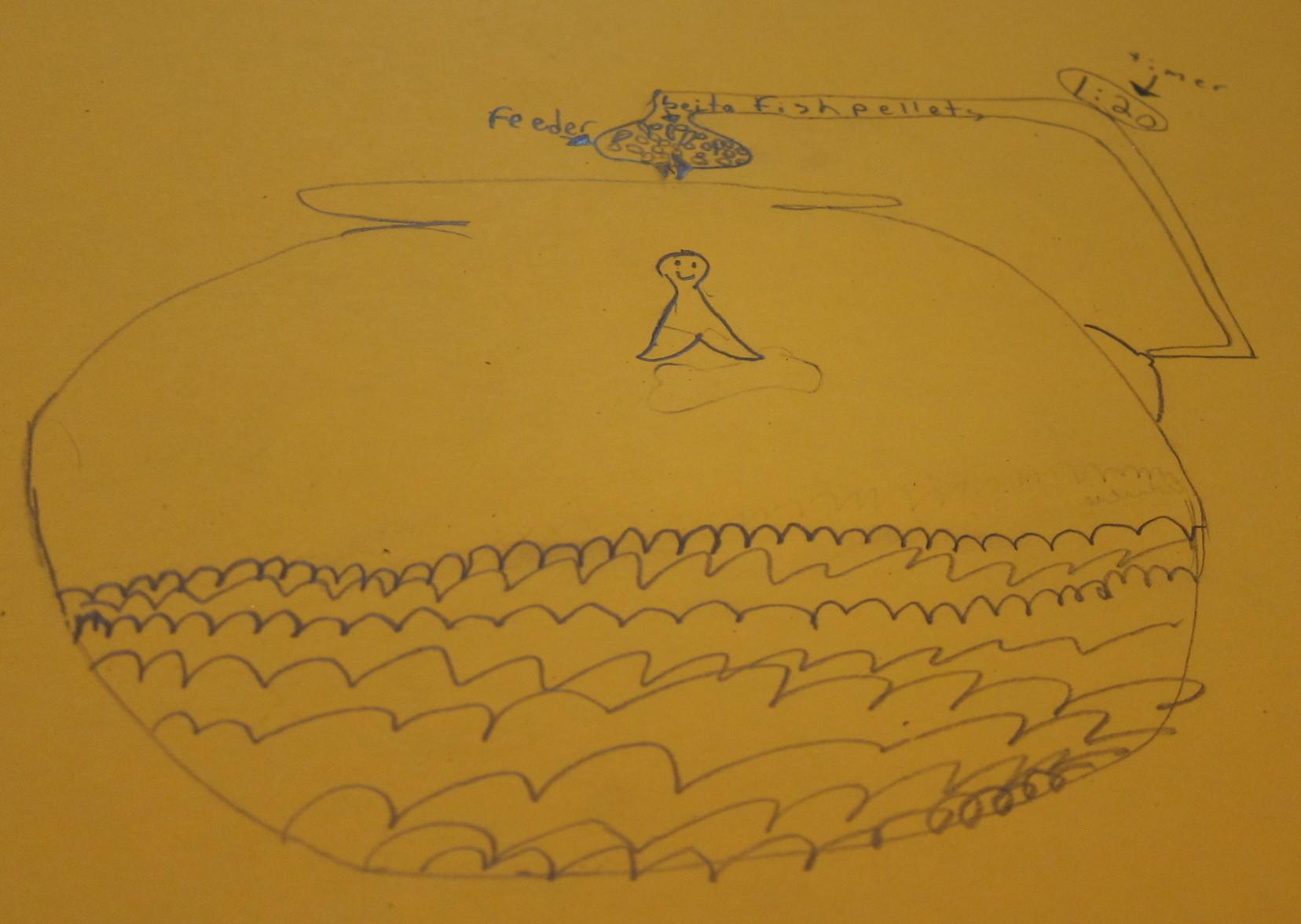 Rachel Fish Feeder Sketch